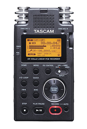 7 Digital Recording Devices for Oral History Interviews - TASCAM DR-100mkII